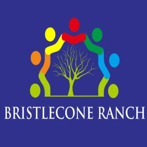 나무 로고-Bristlecone Ranch